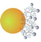 Micro- & Nanoparticles